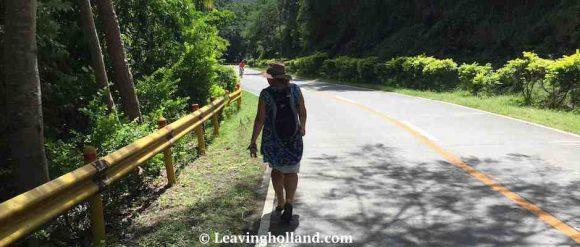 JC wandering