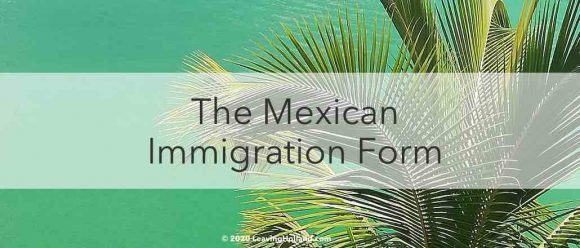 Mexican Immigration Form